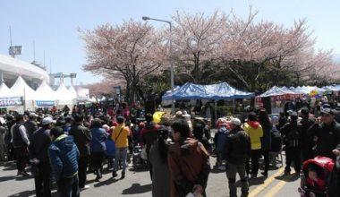 Cần làm gì để Phú Quốc được như Jeju?